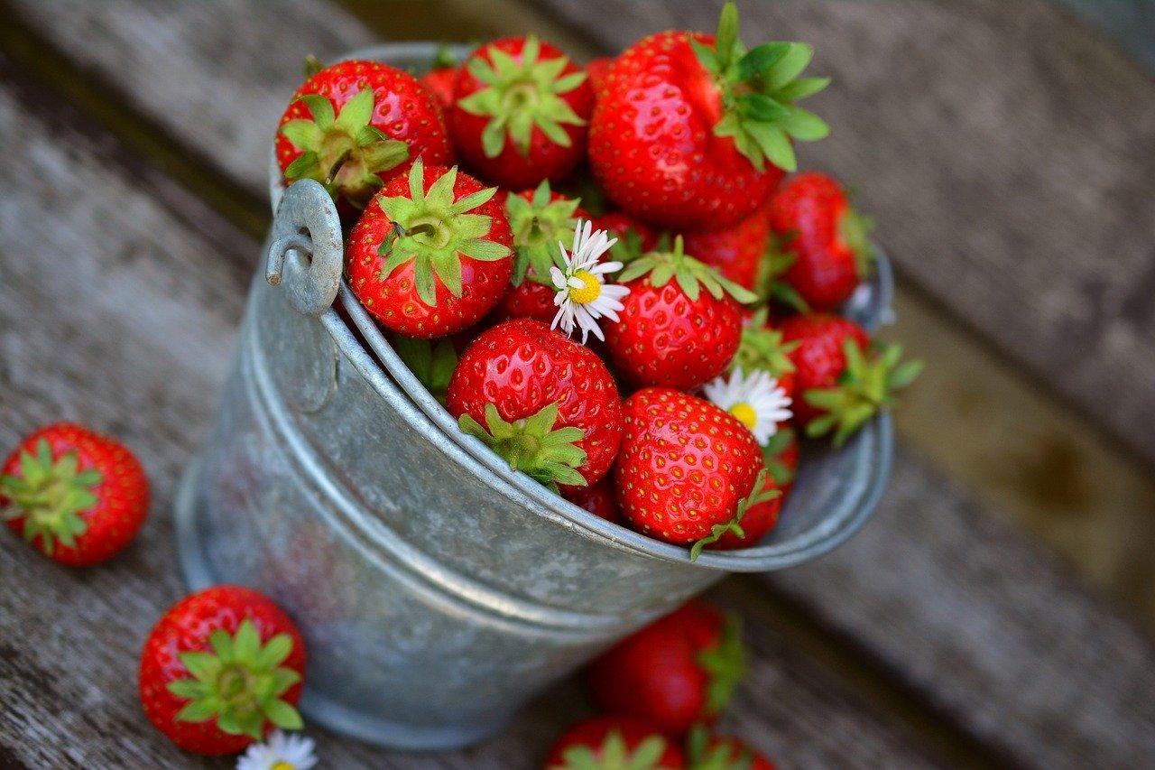 Jahody jsou lahodné a s minimem kalorií